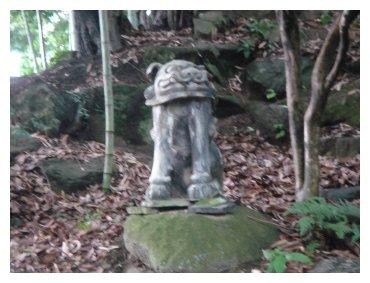 大泉寺 石像